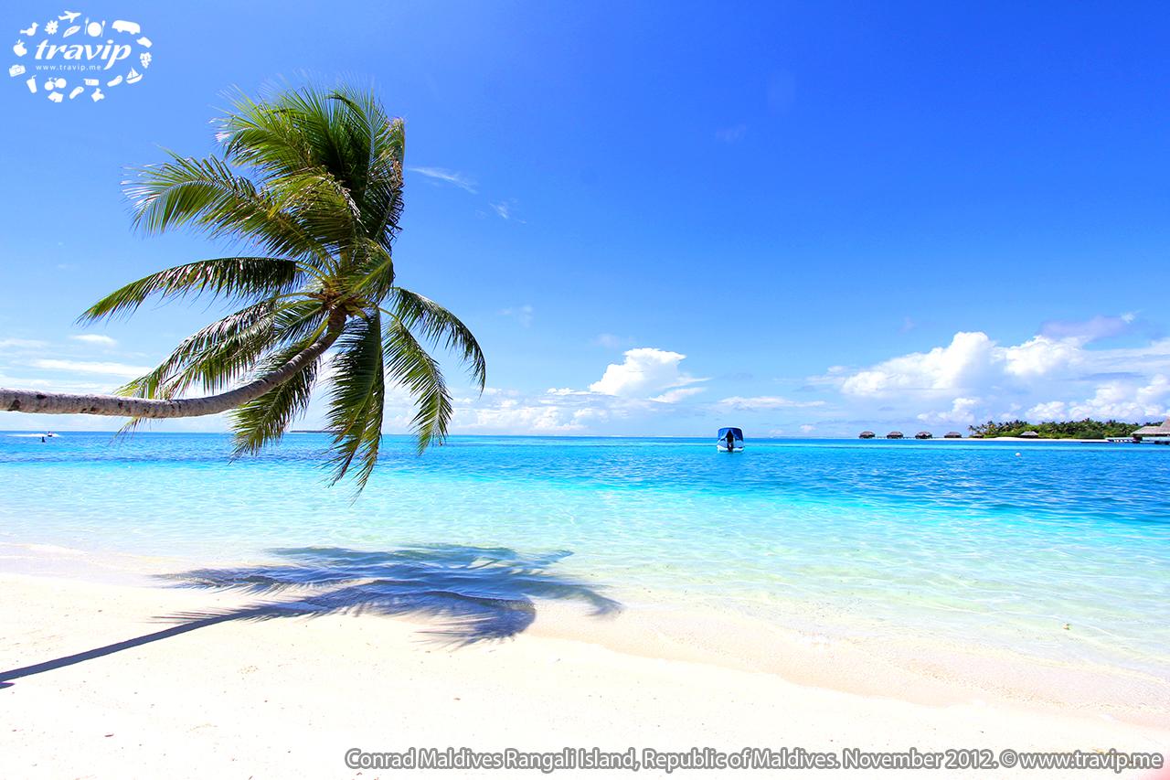 Bãi biển ở Conrad Maldives Rangali Resort.