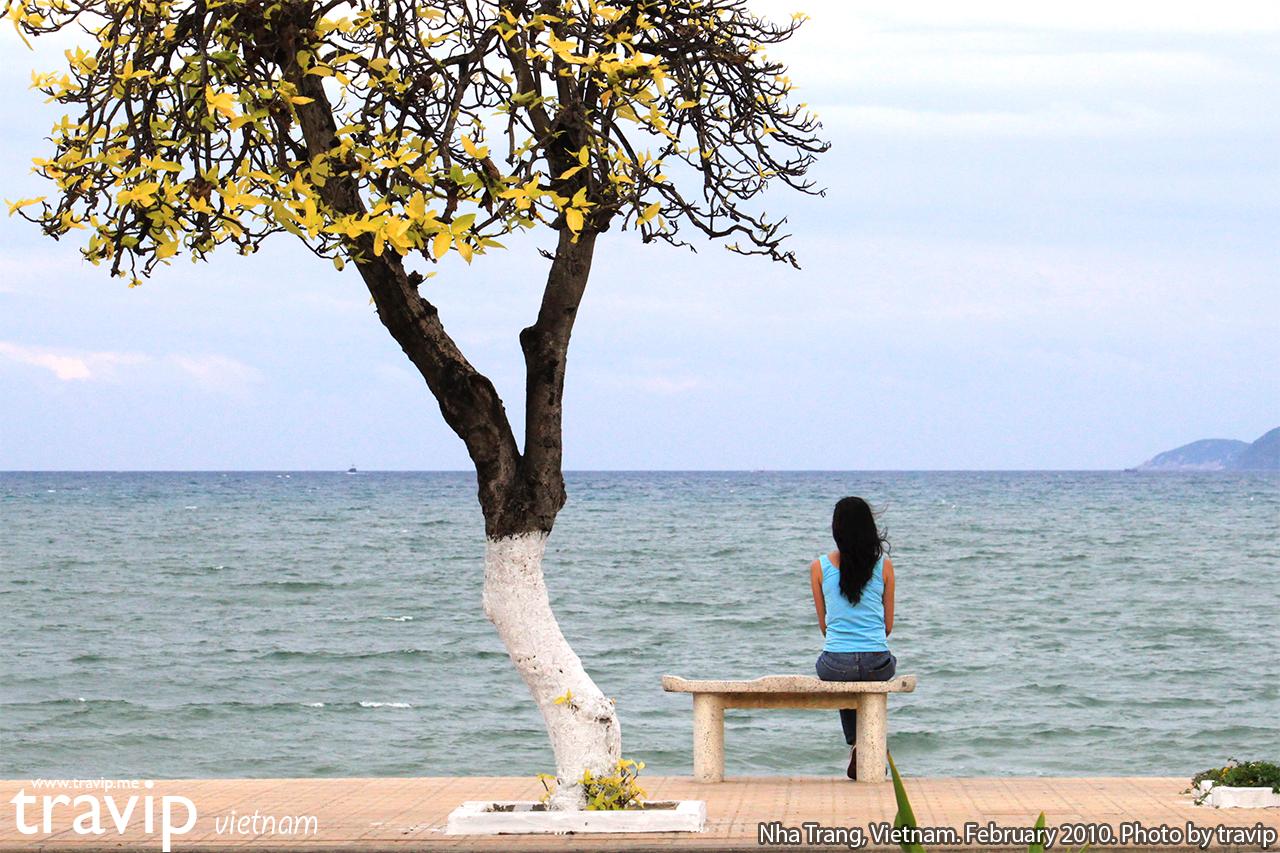Những ngày biển không nắng thì Nha Trang trông vẫn rất đẹp.