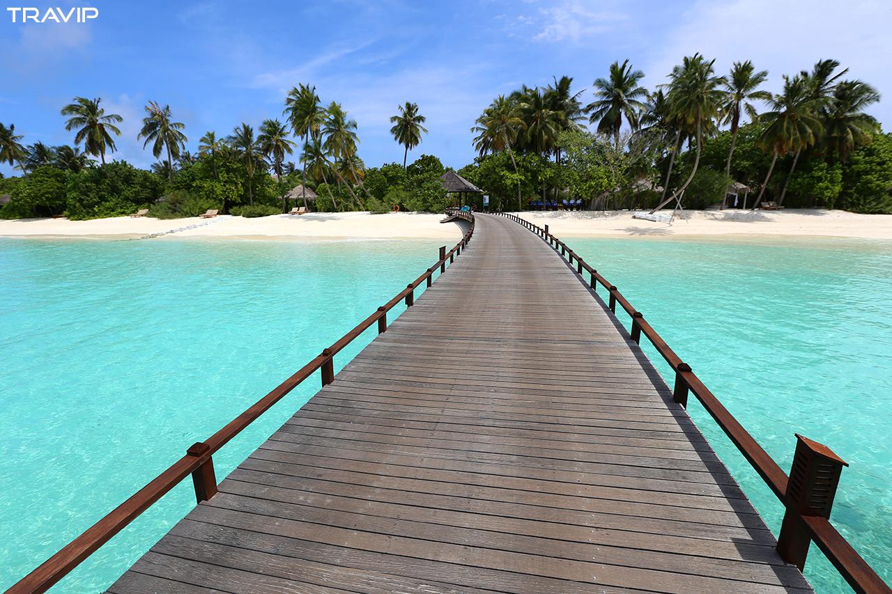 Đi Maldives mùa hè chính ra lại rẻ vì là mùa thấp điểm, giá phòng giảm mạnh. Lúc này là mùa mưa ở Nam Á nhưng chẳng hề chi, những cơn mưa ở Maldives chỉ thoáng qua và mặt trời vẫn cứ ngự trị. Ngày hè, trời không quá nóng, giá phòng giảm, không quá đông du khách. Còn gì tuyệt hơn.