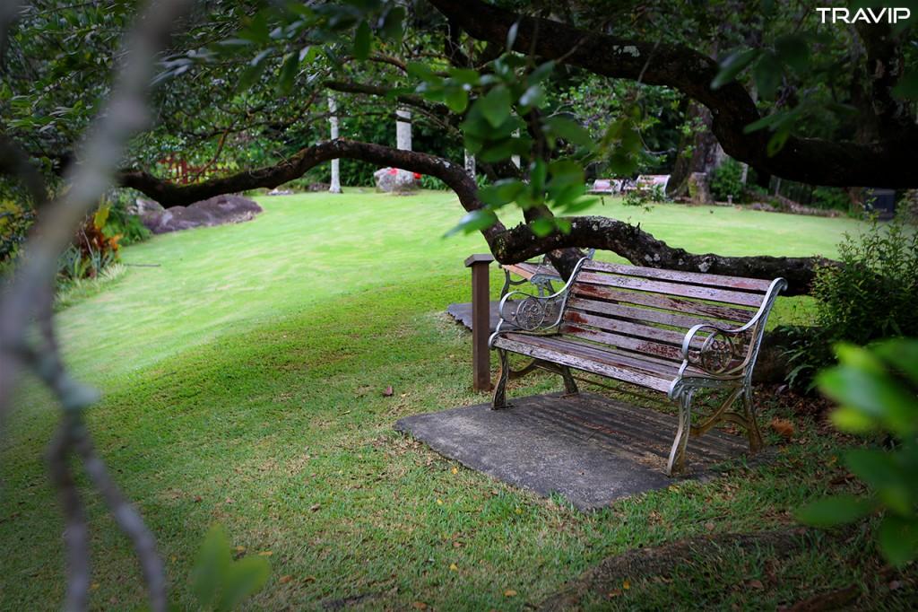 Vườn bách thảo ở thủ đô Victoria