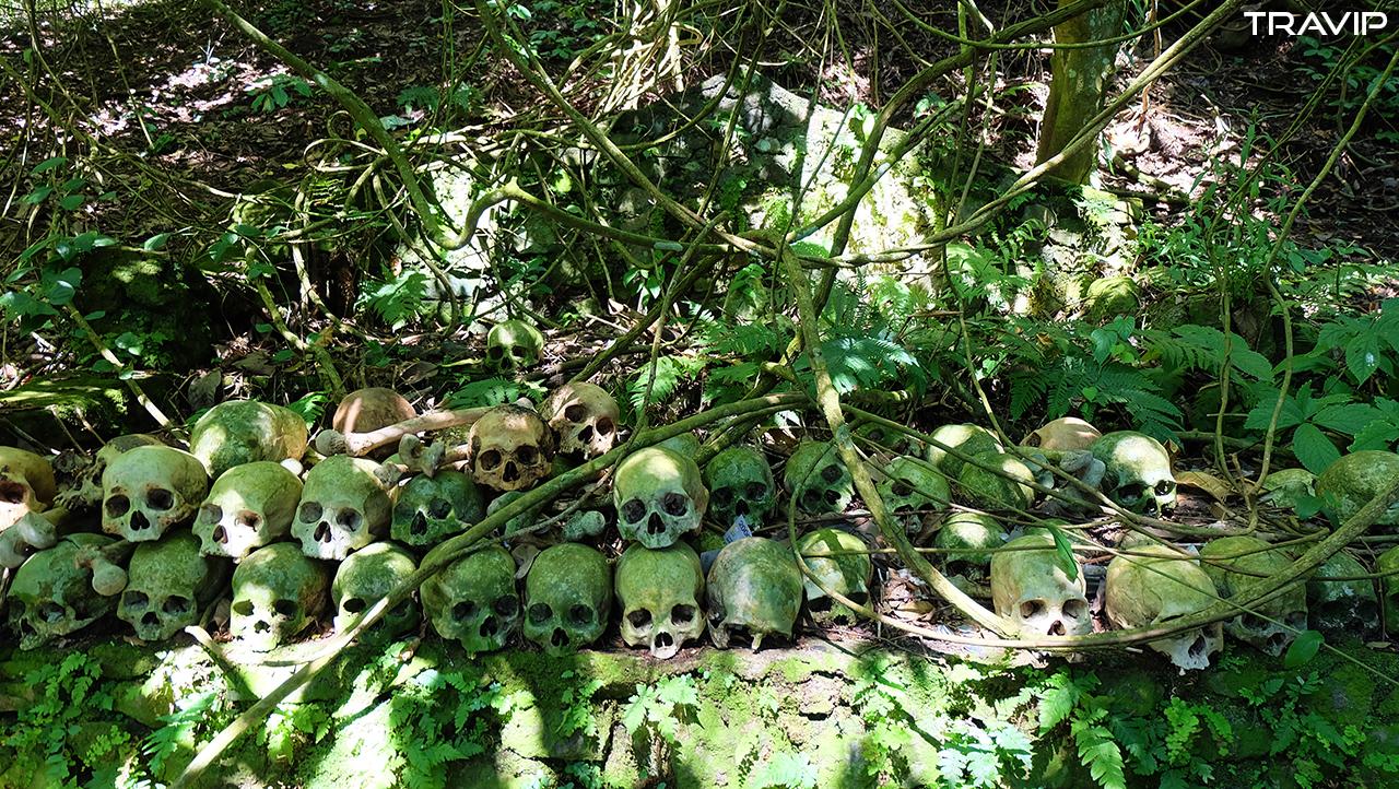 Đầu lâu được tách rời và để lên bệ đá dưới bóng cây Taru Menyan.