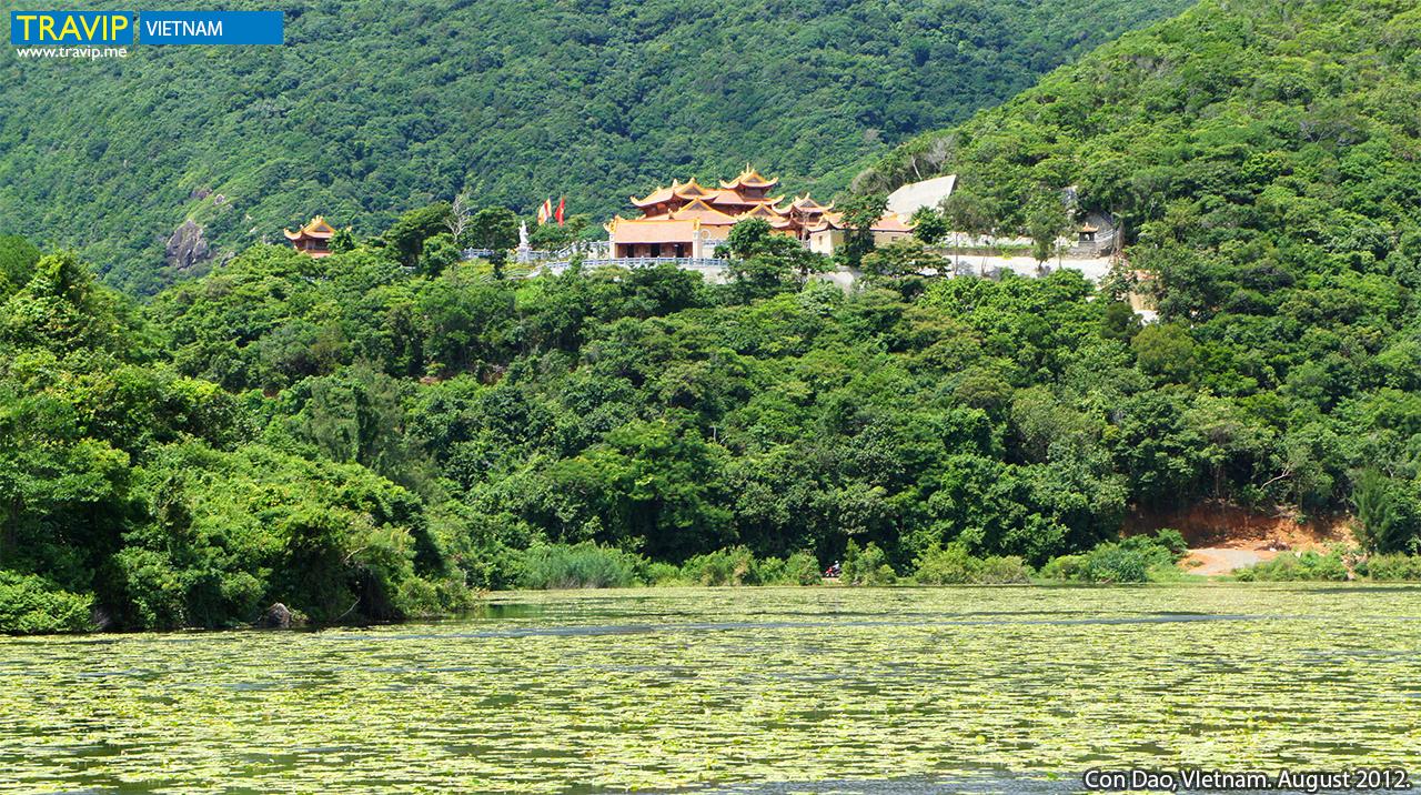 Chùa Núi Một (Vân Sơn Tự) tọa lạc trên một ngọn đồi, bên dưới có cánh đồng hoa súng.